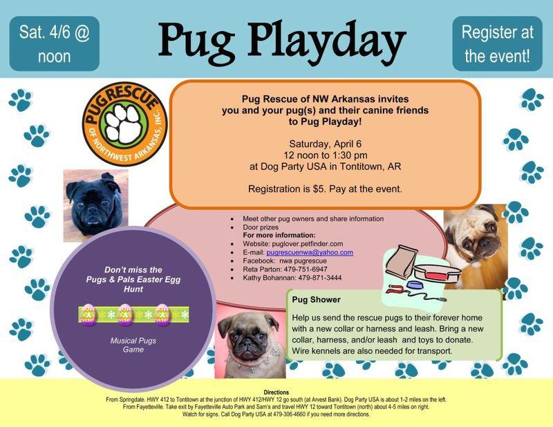 Pug Play Day