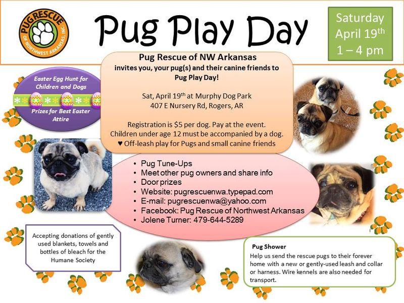 Pug Play Day 2014